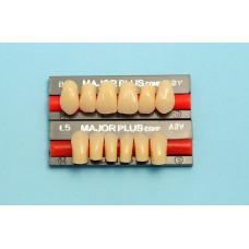 Hlavní složené přední zuby 6ks