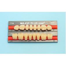 Hlavní boční složené zuby 8ks