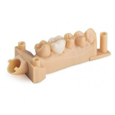 Pryskyřice pro 3D tiskárnu Dental Model V2 1l