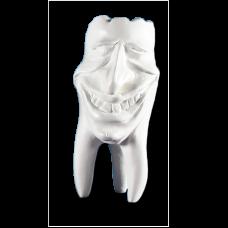 Sádrové zuby Kolekce zubů Hinrichs '' Mike ''