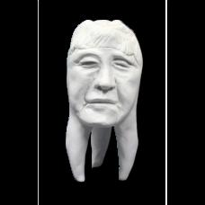 Sádrové zuby Hinrichsova sbírka zubů '' Angi ''