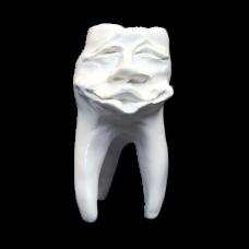 Sádrové zuby Hinrichsova sbírka zubů '' Mick ''