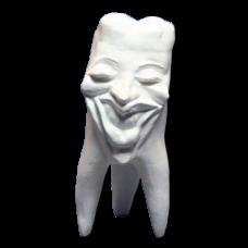Sádrové zuby Kolekce zubů Hinrichs '' Marylin ''