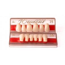 Přední zuby WIEDENT 6 ks