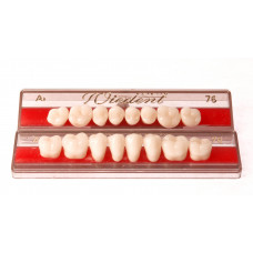 Boční zuby WIEDENT 8 ks