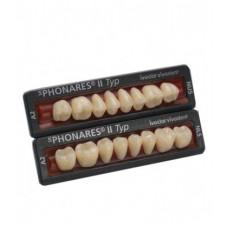 Kompozitní zadní zuby Phonares typu II. Dostupné na vyžádání