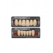 Kompozitní přední zuby Phonares typu II. Dostupné na vyžádání